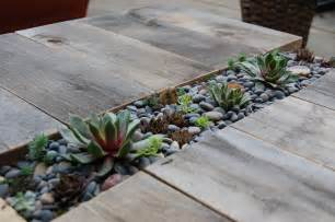 Diy Succulent | diy succulent table far out flora