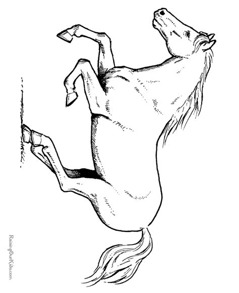 coloring sheets of a horse horse coloring pages free printable horse coloring sheet