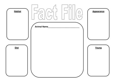 animal fact cards template animal fact file frame and matching activities by