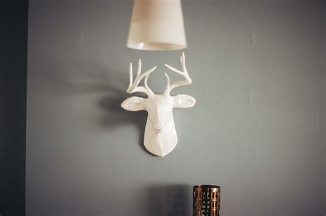 home interior deer picture free stock photo of deer home interior