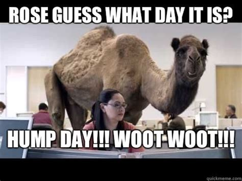 geico camel commercial hump day geico camel rose guess what day it is hump day woot woot