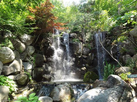 cascadas con 225 rboles imagui descargar gratis cascada piedras los rboles naturaleza