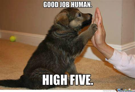 Great Job Meme - congratulations puppy by otakugamer123 meme center