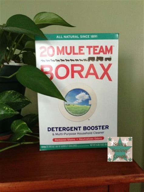 will borax kill bed bugs gov t mule insects and foundation on pinterest