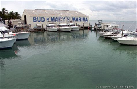 boat mechanic islamorada bud n mary s fishing marina atlantic cruising club