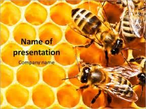 Waben Und Bienen Powerpoint Vorlagen Und Hintergr 252 Nde Id 0000010719 Smiletemplates Com Bee Powerpoint Template