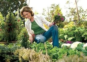 how to protect your back while gardening belvidere
