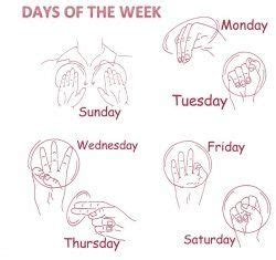 different days of week days of the week sign language project learning about