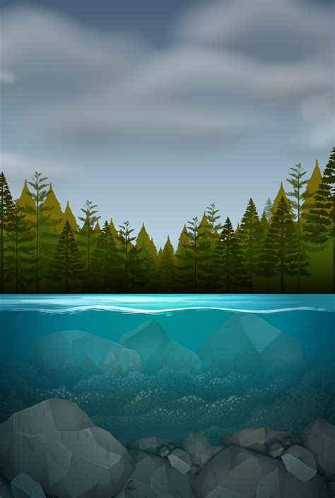 underwater nature landscape   vector art