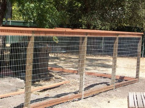 backyard fencing ideas for dogs great dog fencing outdoor ideas pinterest