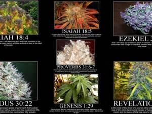 Marihuana Memes - smoke weed meme memes