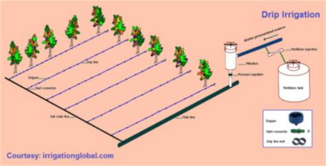 design and layout of drip irrigation system modern irrigation methods and systems