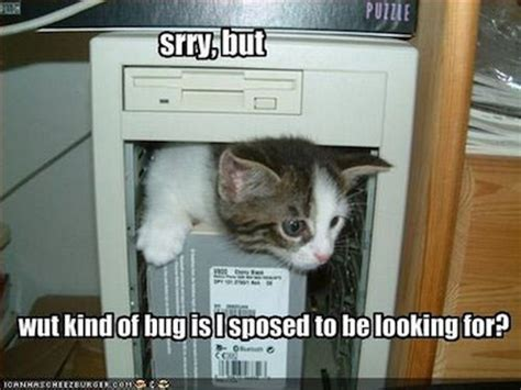 Computer Repair Meme - friday funnies cats are better it techs getacopywriter blog