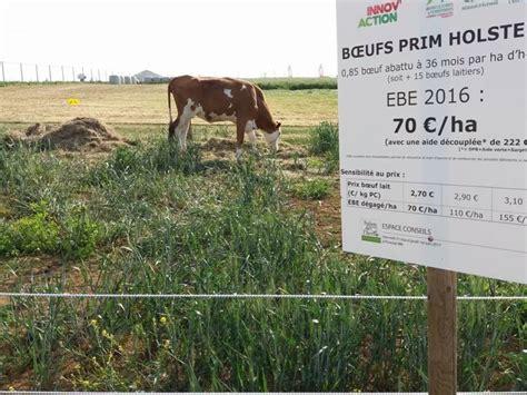 chambre agriculture vosges salon de l herbe et les fourrages 233 v 232 nement national 224