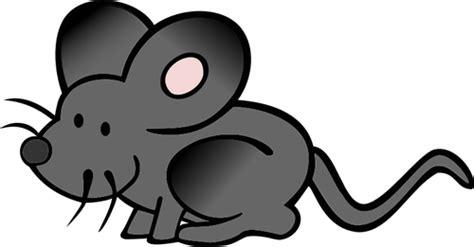 imagenes animadas raton vector de la imagen de esconder rat 243 n de dibujos animados