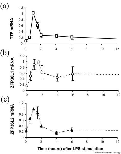 pattern expression meaning tristetraprolin ttp zfp36l1 and zfp36l2 expression