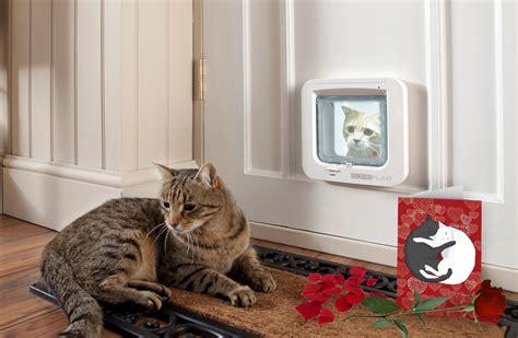 Pet Doors For Cats by Microchip Pet Doors Petdoors Melbourne