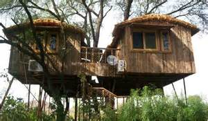 top 7 romantic tree house resorts in india waytoindia com