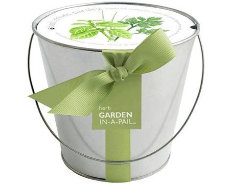 herb pail  contained grow kit eco friendly patio