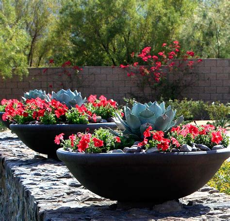 beautiful container garden ideas beautiful container gardening ideas inspired home