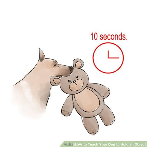 how can a puppy hold it how to teach your to hold an object with pictures wikihow