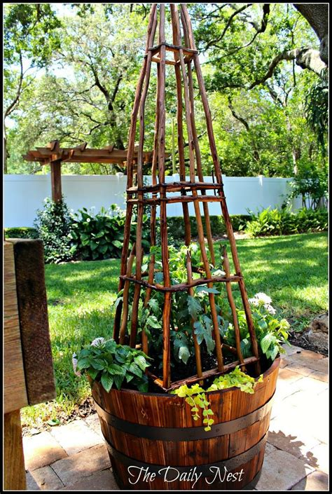 Whiskey Barrel Planter Ideas by The Daily Nest Welcome To A Whiskey Barrel Planting