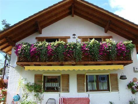 gartendeko frankfurt so das wachsen eines petunienbalkons im zeitraffer