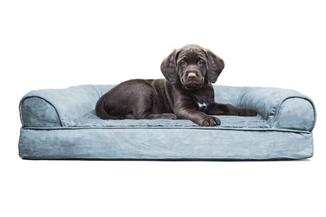 sofa for dog sofa dog beds with sofa dog beds jinanhongyucom dog beds