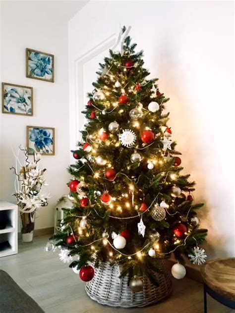 albero di natale in casa festivit 224 con forlitoday ecco le foto degli alberi di