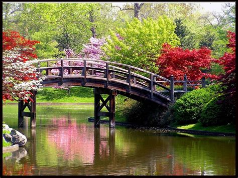 Beautiful Spring by Beautiful Spring Wallpapers Galleryhip Com The Hippest