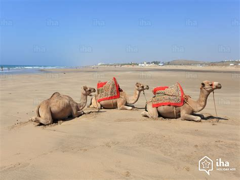 on the beach tanger t 233 touan rentals in the countryside for your vacations