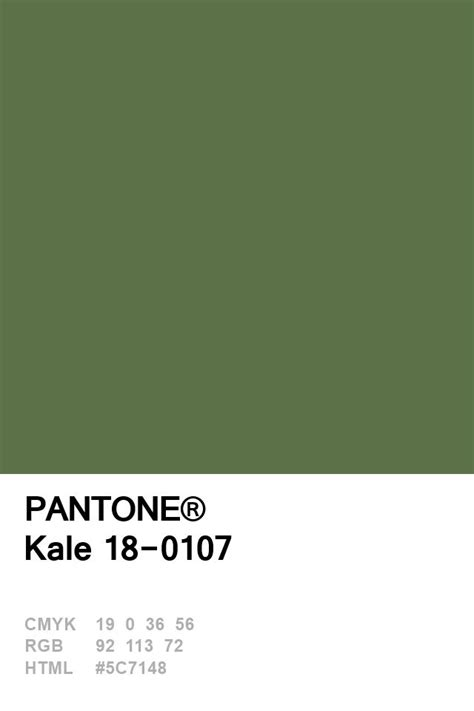 pantone green best 25 pantone green ideas on pantone blue pantone paint and pantone chart