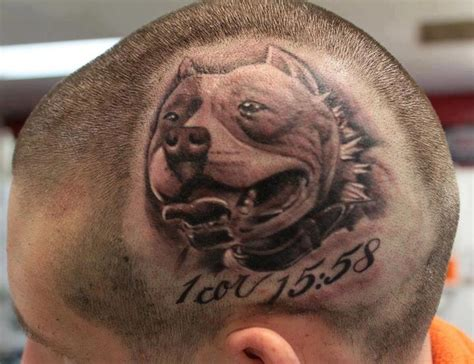 pitbull tattoo fighting pit bull tattoos pit bulls