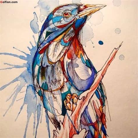 55 amazing aqua bird design 55 amazing aqua bird design best bird
