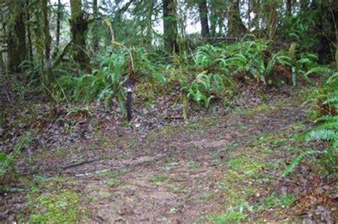 Soapstone Lake Oregon - soapstone lake loop trail junction hiking in portland