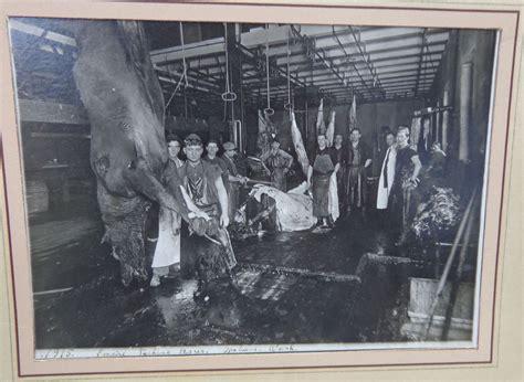 cabinet photo  bloody horse slaughterhouse spokane