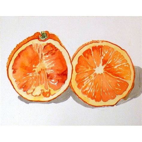 orange painting 25 best ideas about fruit orange on pinterest citrus