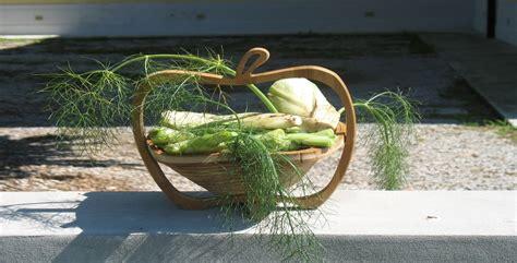 come fare un orto in terrazzo come fare un orto in casa orto fai da te