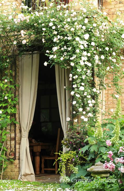 Outdoor Winter Curtains Idea For Doors On Side Of House Leading To Courtyard Maybe Use Wisteria Vine Instead