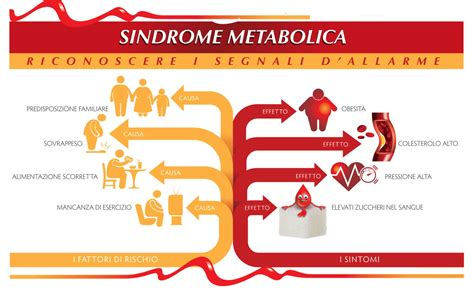 alimentazione metabolica la sindrome metabolica