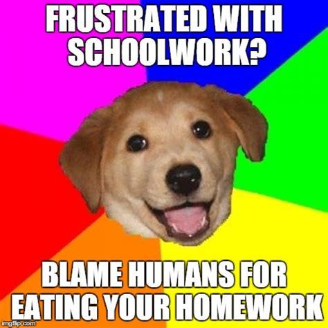 Advice Dog Meme - advice dog meme imgflip