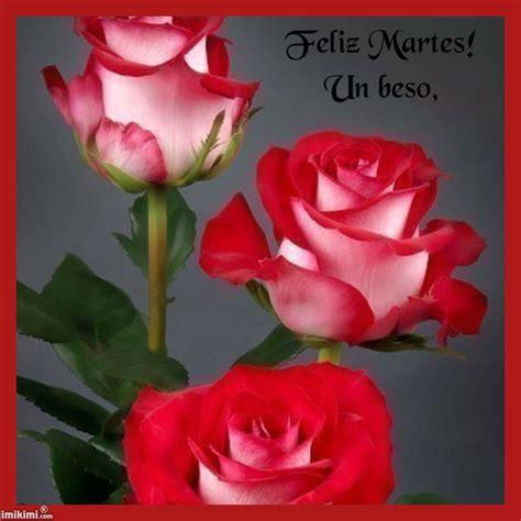 imagenes de buenas noches feliz martes tarjetas hermosas de martes im 225 genes de facebook