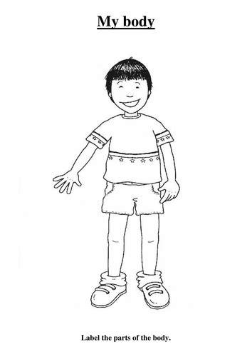 my body by sarah morgan teaching resources tes