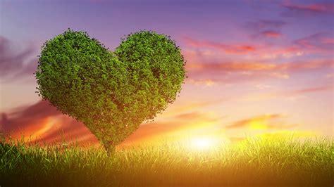 imagenes fondo de pantalla naturaleza image gallery naturaleza amor
