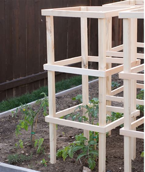 build tomato cage diy wooden tomato cages