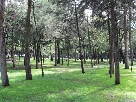 imagenes zonas verdes 193 reas verdes del df blog propiedades com