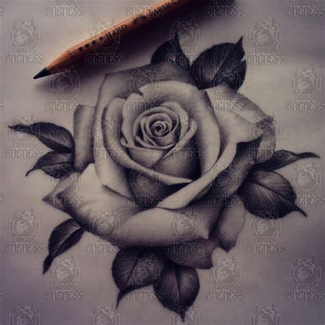 realistic rose drawing tattoo by madeleine hoogkamer