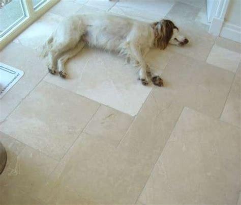 pavimento marmo bianco pavimenti interni in pietra foto 11 40 design mag