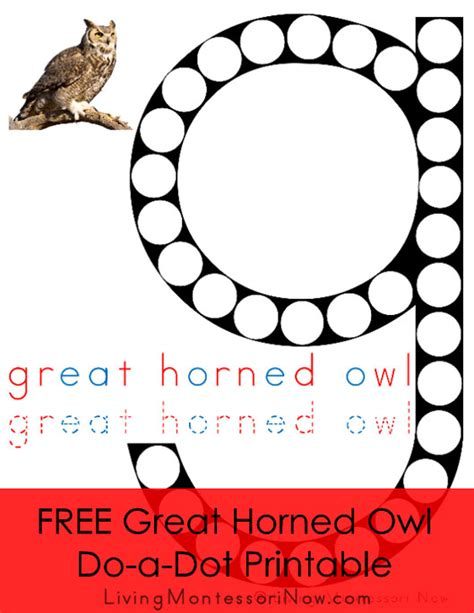 printable pictures of great horned owl free great horned owl do a dot printable montessori