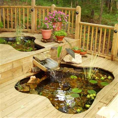 best ponds from readers yards pond decking and fish ponds